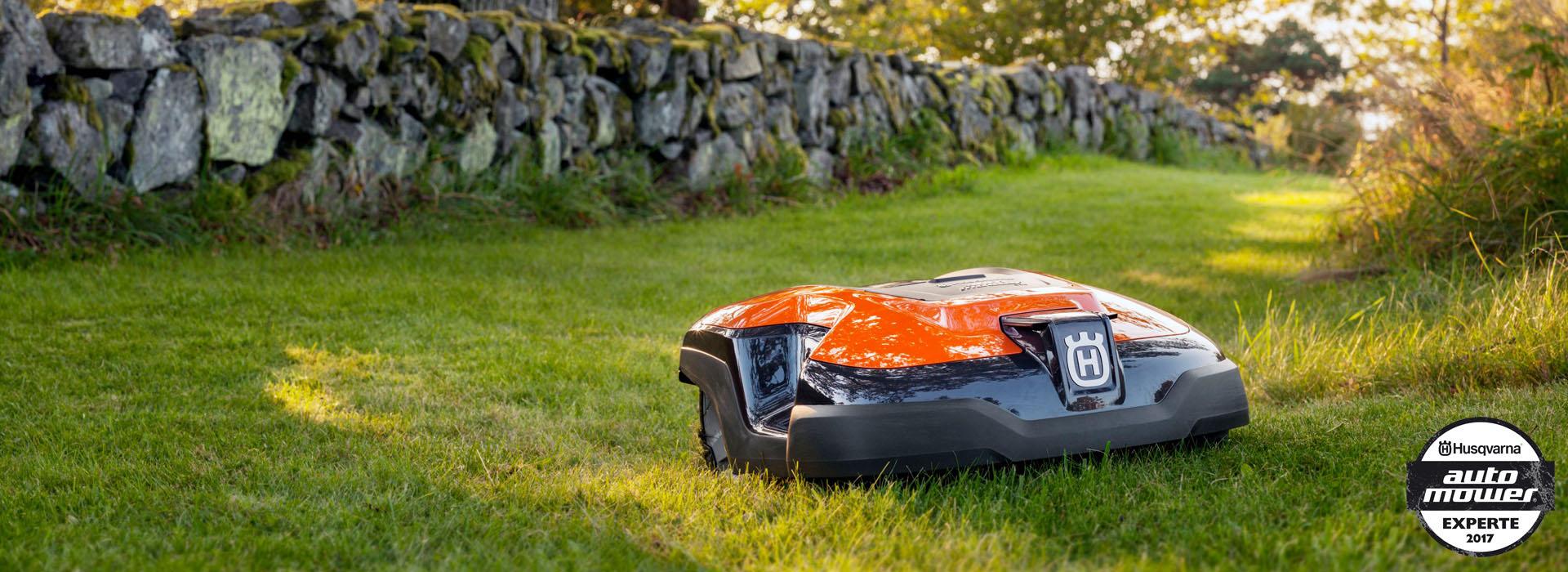 Boerger-Motorgerate-Rasenroboter-Rasenmäher-Robomäher-Mähroboter-Automower-im-Einsatz-perfekter-Rasen